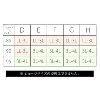 大きいサイズ レディース 【D-F】配色レースブラジャー&ショーツ3セット組|clette-online|06