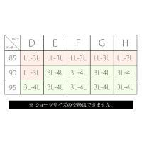 大きいサイズ レディース 【G-H】配色レースブラジャー&ショーツ3セット組|clette-online|06