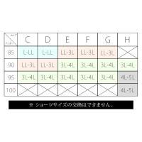 大きいサイズ レディース 【C-F】谷間キープレースブラジャー&ショーツセット|clette-online|07