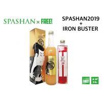 スパシャン2019 & アイアンバスター3 ガラスコーティング剤 スパシャン SPASHAN