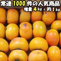 柿 訳あり 送料無料 富有柿 甘柿の王様 奈良 西吉野 柳澤果樹園 富有柿 4kg+増量約1kg 計5kg 約13~23玉 家庭用