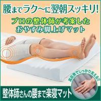 整体師さんの腰まで楽寝マット 送料無料 プロの整体師が考案したおやすみ脚上げマット♪ 「人生の3分の...