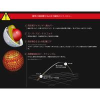今なら送料無料! ダンロップ スリクソン-X  ゴルフボール 1ダース(12球)DUNLOP SRIXON-X 日本正規品|daiichigolf|03