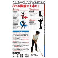 送料無料 ロイヤルコレクション TRI-ONE STICK 43 45 トライワンスティック スタンダード43&45 素振り用練習器具|daiichigolf|02
