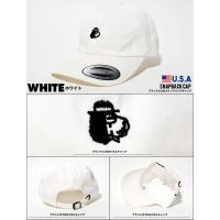 CRUIZER & Co. クルーザーアンドコー ローキャップ メンズ 帽子 SMALL DOG DAD HAT