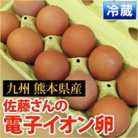 熊本産  電子イオン卵  1パック 10個入 ( 野菜セット と同梱で送料無料 ) 九州 熊本 卵 鶏卵