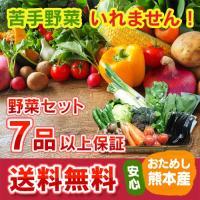1週間で使い切る! クール便 送料無料 九州 熊本産 定番野菜7品以上保証 くまもと 野菜セット 定...