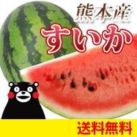 今年も熊本のスイカの季節になりました! 6〜7kgの大玉で甘さも十分です。 スイカならでは風味と食感...
