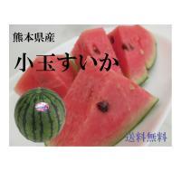 熊本のスイカをご賞味ください! 小玉スイカは大玉スイカとまた風味が違い、甘味も濃くなります。 薄皮な...