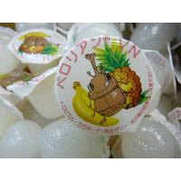 よく食べる ペロリアン 昆虫ゼリー(無着色)16g約500個 VN16-500