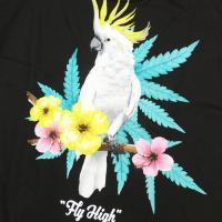 DGK ディージーケー Tシャツ メンズ 半袖 FLY HIGH TEE ブラック