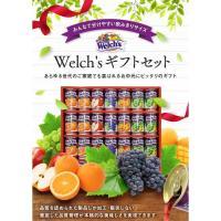 ウェルチ 100%果汁ギフトWS30 (B4-100) (171068a093)