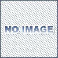 岩田製作所 トリムシール  金物、部品 3100-B-3X16CT-L40 3100シリーズ Cタイプ 黒