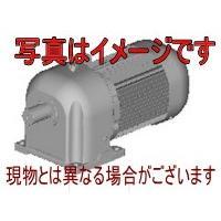 三菱電機 GM-DP 0.75kW 1/25 200V ギアードモータ GM-DPシリーズ(三相・脚取付形) - noithathappyhousevn.com