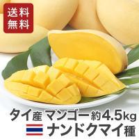 タイ産 マンゴー ナンドクマイ種 生鮮 航空便 9~15玉入り とろける甘さが自慢
