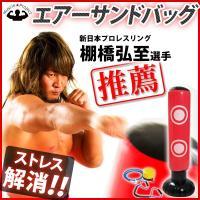 いっきりパンチ&キック!!運動しながらストレス発散 キミの理想をカタチにする!新日本プロレスリング ...