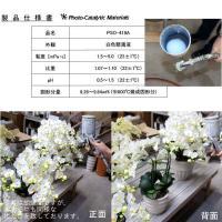 お祝い お供えの花 仏花 フラワーギフト 光触媒胡蝶蘭小輪 1本立ショート ホワイトA