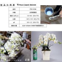 お祝い お供えの花 仏花 フラワーギフト 光触媒胡蝶蘭小輪 2本立 ホワイトB