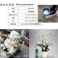 お祝い 造花 フラワーギフト 光触媒オンシジューム 【2本立】 ホワイトレッド