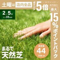 人工芝 ロール リアル人工芝 芝生 ロールタイプ 2m×5m 芝生マット
