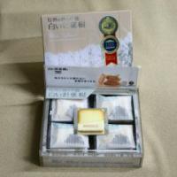 信州長野県のお土産 お菓子 洋菓子 白い針葉樹12個入