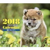 ■ISBN:978-4-416-91754-1 ■タイトル:新品本/'18 柴犬カレンダー 井川 俊...