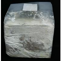 菌糸ブロック YSO-3500ccオオヒラタケ(クヌギ100%) オオクワなどの菌糸ビン作成に
