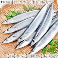 ■北海道から漁獲日に、航空便で発送、翌日お届け致します(高鮮度商品)  ■2kg前後(13尾前後入)...