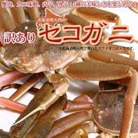 北海道噴火湾で獲れたズワイガニのメスです。オスに比べると大きさは小さいですが、濃厚なカニ味噌、内子、...