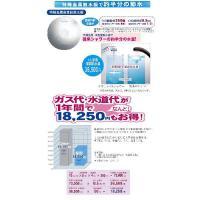 ◆イオニックCシャワー◆【送料無料】
