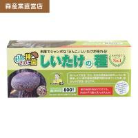 シイタケ種駒 【しいたけ種駒800個】 [しいたけ菌/椎茸菌/しいたけ栽培/シイタケ栽培/椎茸栽培] 日本で一番売れてます!