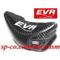 EVR DUCATI 916/996/998用カーボンウォータータンク イタリア製ドライカーボンVer.2 996R/998R/748R
