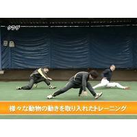 クリーチャートレーニング~生き物の動作が選手の体を活性化させる~