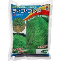 タキイ種苗 芝種 センチピードグラス ティフ・ブレア 500g 2袋セット e-hanas