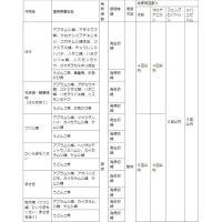 殺虫剤 殺菌剤 害虫 ベニカXファインスプレー 420ml 住友化学園芸|e-hanas|04