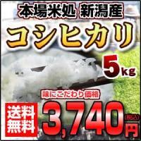 新潟県産こしひかり 【平成28年産 コシヒカリ】 5キロ おいしいお米|e-kawamiya