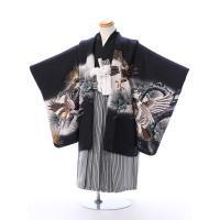5歳男の子 羽織袴レンタル  古典柄をあしらった黒羽織に縞袴スタイルは定番人気です   羽織:黒 鷹...