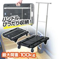 【送料無料】 ナンシン  コンパクトキャリー (積載荷重100kg)  CC-211K ブラック  ...