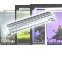 【送料無料】 ゼンスイ  LEDランプ 30cm 水槽用 照明 ライト   ●本体サイズ:幅30×奥...