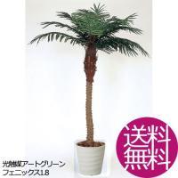 観葉植物 造花 おしゃれ フェニックス1.8 お祝い
