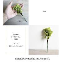 多肉植物 シードブッシュ  造花 フェイクグリーン