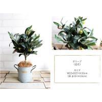 オリーブ H33 観葉植物 造花 CT触媒 フェイクグリーン