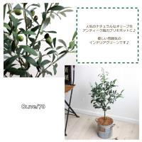 フェイクグリーン オリーブ H70 ブリキポット  観葉植物 造花 インテリア CT触媒 送料別途 北海道、沖縄 +1500円
