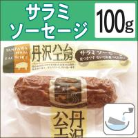 無添加惣菜 サラミ 丹沢高原豚 サラミソーセージ 100g ポイント消化