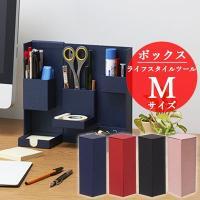 ナカバヤシ ライフスタイルツール ボックス Mサイズ LST-B02