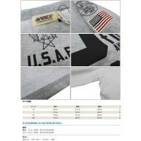 AVIREX アビレックス 長袖 ナンバリング Tシャツ アメリカ空軍70周年記念 U.S.A.F. 70th ANNIVERSARY avi6173438