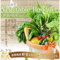 【商品説明】  見て楽しい、食べて美味しい 全く新しい北海道産野菜ブーケです! 北海道産の野菜の花束...