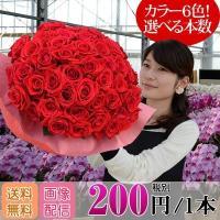バラ花束 200円/1本還暦祝い 選べるカラー 30本〜始めました。フラワーギフト プレゼント プロ...
