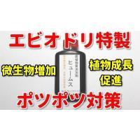 エビオドリ特製 水質添加剤 カムジー2本+ヒュームス2本お試しセット シュリンプ、メダカ、ベタにどうぞ