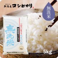コシヒカリ 5kg 無洗米 - 米 こしひかり 新潟産 お米 送料無料 平成30年産